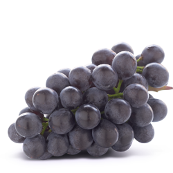ontario coronation grape
